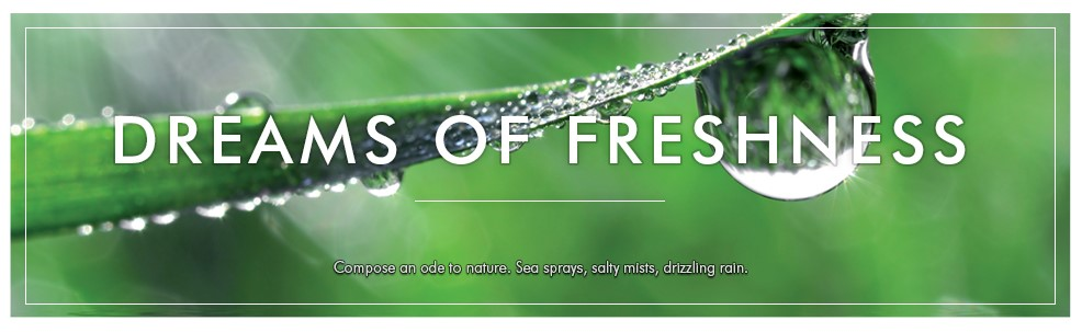 Banner-dream-of-freshness