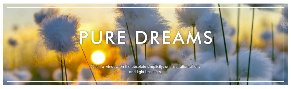 Banner-pure-dreams